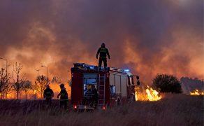 Układ ruchu strażaka Państwowej Straży Pożarnej