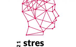 stres cyfrowy 2021